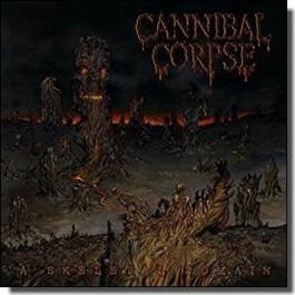 A Skeletal Domain [CD]