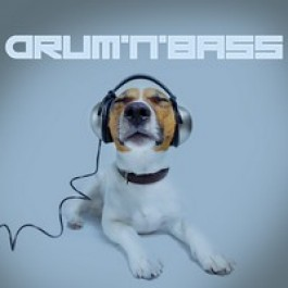 Drum'n'Bass [CD]