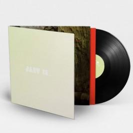 Beyond the Pale [LP]