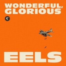 Wonderful, Glorious [CD]