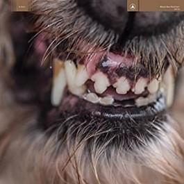 World Eater [CD]