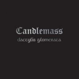Dactylis Glomerate [LP]