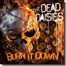 Burn It Down [CD]