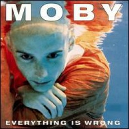 Everything Is Wrong [CD]