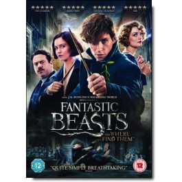 Fantastic Beasts and Where to Find Them [DVD]