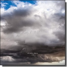 All Visible Objects [2LP]