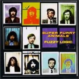 Fuzzy Logic [CD]
