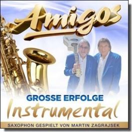 Große Erfolge: Instrumental [CD]