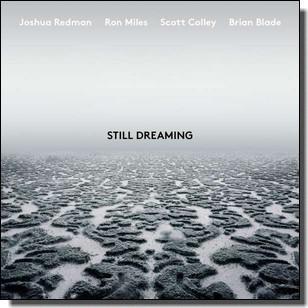 Still Dreaming [CD]
