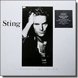 Nothing Like the Sun [2LP]