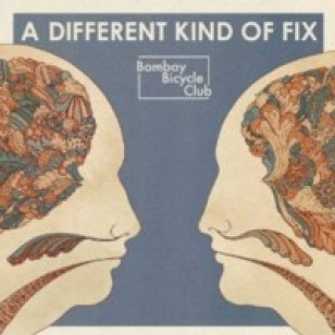 A Different Kind of Fix [CD]