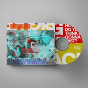 How Long Do You Think It's Gonna Last? [CD]
