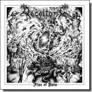 Flux of Ruin EP [CD]