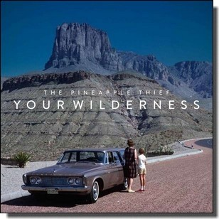 Your Wilderness [LP]