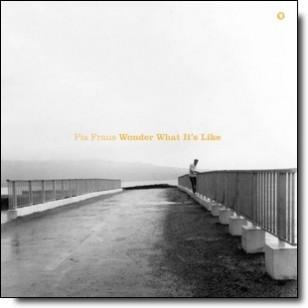 Wonder What It's Like [LP]