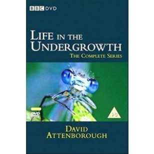 Life in the Undergrowth - The Complete Series