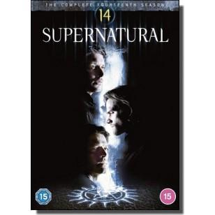 Supernatural: Season 14 [5xDVD]