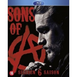 Sons of Anarchy: Season 6 [4Blu-ray]