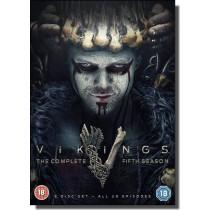 Vikings: Season 5 [6x DVD]