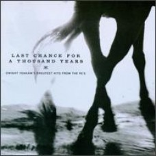 Last Chance For A Thousand Years: Greatest Hits From The 90's [CD]