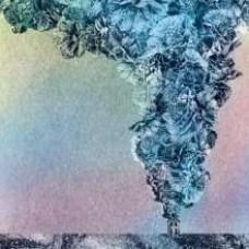 Carnation [CD]