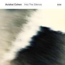 Into the Silence [2LP]
