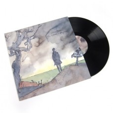 The Colour in Anything [2LP]