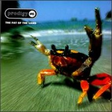 The Fat of the Land [CD]