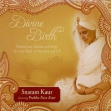 Divine Birth [CD]