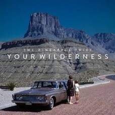 Your Wilderness [CD]