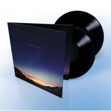 Singularity [2LP+DL]