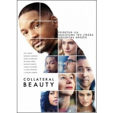 Peidetud ilu | Collateral Beauty [DVD]