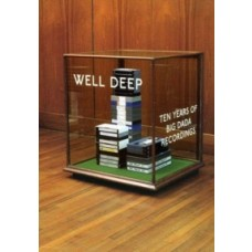 Well Deep: 10 years of Big Dada Rec [DVD]