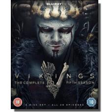 Vikings: Season 5 [6x Blu-ray]