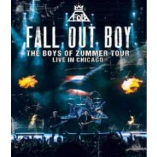The Boys of Zummer Tour: Live In Chicago [Blu-ray]
