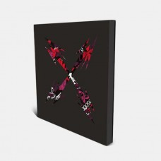 Brainfeeder X [2CD]