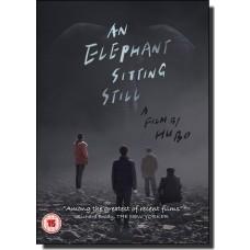 An Elephant Sitting Still | Da xiang xi di er zuo [DVD]