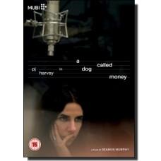 A Dog Called Money [DVD]