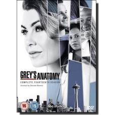 Grey's Anatomy: Complete Fourteenth Season [6DVD]