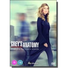 Grey's Anatomy: Complete Sixteenth Season [6DVD]
