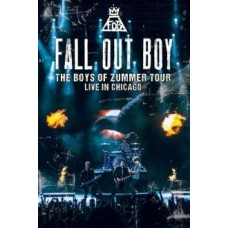 The Boys of Zummer Tour: Live In Chicago [DVD]