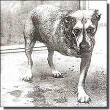 Alice In Chains [CD]